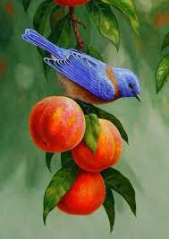 western bluebird and ripe peaches samsung galaxy case
