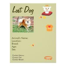 Lost Pet Flyer Maker lost dog flyer maker For the Home Pinterest Flyers maker 39