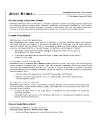 Resume Sales Objective Thrifdecorblog Com