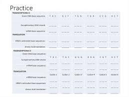 Amino Acid Translation Chart Transcription And Translation And The Genetic Code