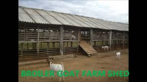 Goat Shed Design And Pictures How To Build A Goat Shed In India Lawn Shed Plans