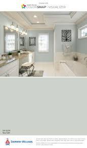 sea salt paint colorSea Salt Paint Bathroom  dactus