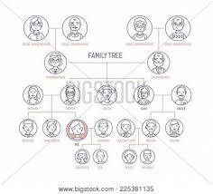 Family Tree Pedigree Chart Template Family Tree Pedigree Vector Photo Free Trial Bigstock