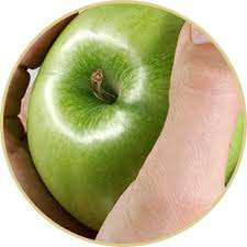 green apple slices png. selection green apple slices png 5