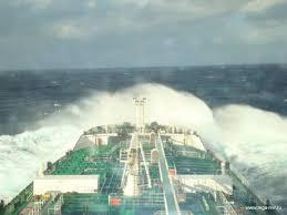 Новороссийский Морской Сайт Отчет по практике на т х azov sea