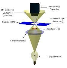 dark field microscopy main page bphs 4090 microscopy i physics wiki