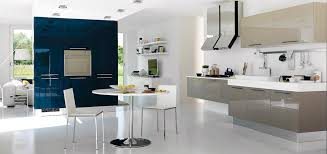 Small Picture Kerala Style Interior Design Modular Kitchen Design Ideas With