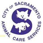 garden grove hospital modern 3 ways you can reinvent garden grove dog and cat hospital without