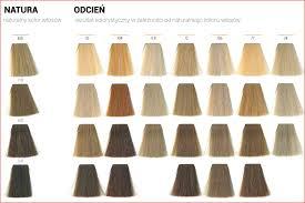 Alfaparf Evolution Hair Color Chart Alfaparf Evolution Of Color Chart 2019