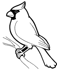 Small Picture Male Cardinal Bird Coloring Page Male Cardinal Bird Coloring Page