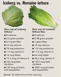 Iceberg Vs Romaine Lettuce In 2019 Lettuce Nutrition