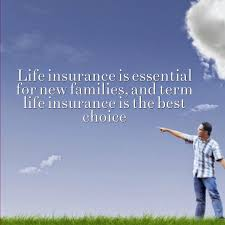 term life insurance policy quotes entrancing best term life insurance quotes new quotes life