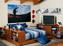 Appealing Cool Room Ideas For College Guys Bedroom Teenage Small Boy