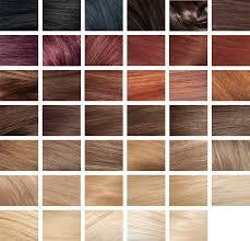 Revlon Professional Hair Colour Chart 75 Factual Revlon Colorsilk Shades Chart