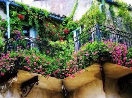 balcony gardens. Huge Floral Display On Balcony Gardens