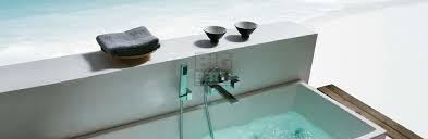 bidet spray and bath tub