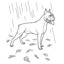 Kleurplaten hond hoofd kleurplaat schattige dieren. Kleurplaat Van Een Hond Printen Leuk Voor Kids