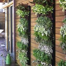 Vertical Garden Design Ideas Impressive Decoration