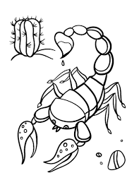 Small Picture Free Scorpion Coloring Page