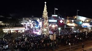 Free Things To Do In San Francisco For The Holidays  Traveling MomChristmas Tree In San Francisco