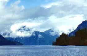 Johnstone Strait!! Images?q=tbn:ANd9GcR6UltTYcRR0Ie5KF2NQj-nQ90hksobcQX41OmjWspGUiN44PQ8