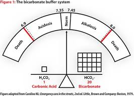 Acidosis Alkalosis Chart Acid Base Balance Understanding Is Critical To Treat