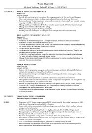Senior Test Analyst Resume Samples Velvet Jobs