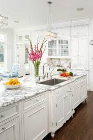 white kitchen cabinets. White Kitchen Cabinets A
