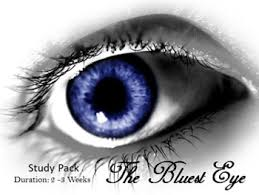 the bluest eye toni morrison by teachaid english literature tpt  the bluest eye toni morrison