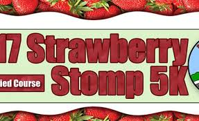 strawberry stomp 5k returns during annual garden grove strawberry festival