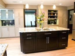 Kitchen Cabinet Hardware Ideas Interesting Decorating Design