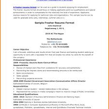 Sap Fico Freshers Resume Format Resume Online Builder