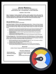CTO Sample Resume  Resume writing service Boston  NYC  Seattle  Austin Resume Writing Lab