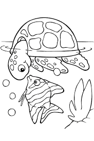 Turtle And Fish Coloring Pages