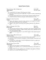 Sample Internship Resume Example Resume Format For Internship