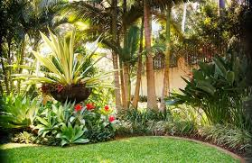 Small Picture Tropical Garden Design Garden ideas and garden design