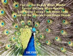 Peacock Beauty Quotes Best of Peacock Quotes Sayings