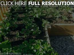 garden safe weed and grass garden safe weed and grass weed for vegetable
