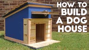 Design And Build A Dog House