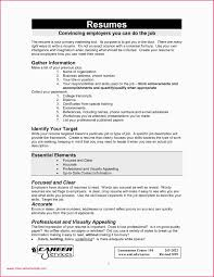 Best Professional Resume Template Professional Resume Template Pdf