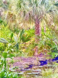 mckee botanical garden xvii