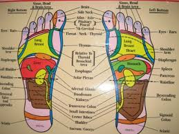 Eunice Ingham Reflexology Chart Unexpected Reflexology Foot Chart Ingham Method Rac Foot