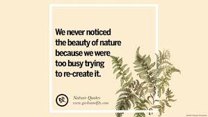 beautiful quotes about saving mother nature and earth we never notices the beauty of nature because we were too busy trying to re