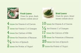 Moringa Benefits Chart Herbs Eos Moringa Powder