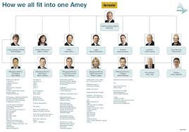 Solidarity And Unity Amey Organisational Chart