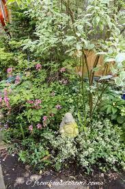 shade garden design ideas how to