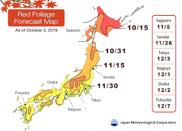 Autumn Reds And Yellows Japans 2019 Foliage Forecast