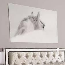 white grey horse large donna