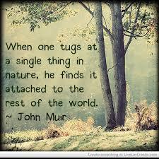 Top three memorable quotes by john muir photo Hindi via Relatably.com