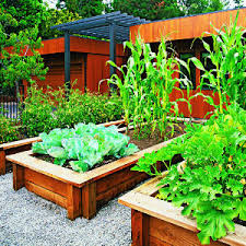 Small Picture How to Build a Raised Bed Home Grown Edible Landscapes